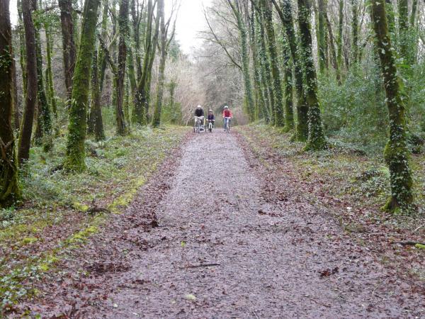 Bike Tours 1