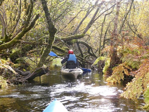 Kayaking 123