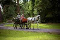 Carraige Ride